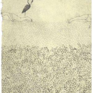 2- Bluebirds-Elisa Bertaglia #2, 29,5x20,5 cm, olio, carboncino e grafite su carta, 2015